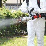 Baltalimanı Böcek İlaçlama, Baltalimanı İlaçlama, Baltalimanı Pire İlaçlama, Baltalimanı Haşere İlaçlama, Baltalimanı Belediyesi İlaçlama