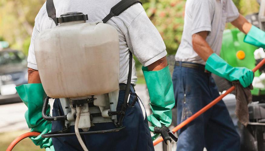Soyak Evostar Böcek İlaçlama, Soyak Evostar İlaçlama, Soyak Evostar Pire İlaçlama, Soyak Evostar Haşere İlaçlama